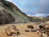 foto of mountain-ash  - National park Landmannalaugar in Iceland - JPG