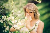 picture of blowing nose  - Woman with pollen allergy in springtime near tree in bloom - JPG
