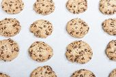 stock photo of baked raisin cookies  - Homemade chocolate chip cookie just baked on a tray - JPG