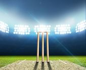 pic of illuminating  - A cricket stadium with cricket pitch and set up wickets at night under illuminated floodlights - JPG