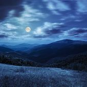 Постер, плакат: Meadow In High Mountains At Night
