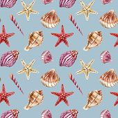 foto of shells  - SeamleSeamless pattern with sea - JPG
