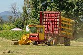 image of alfalfa  - Self contaned hay bale wagon picking up bales of alfalfa from a farm field - JPG