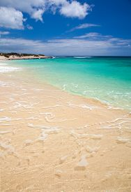 image of burro  - Fuerteventura Burro Beach part Grandes Playas de Corralejo on the north of the island - JPG