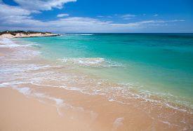 stock photo of burro  - Fuerteventura Burro Beach part f Grandes Playas de Corralejo on the north of the island - JPG