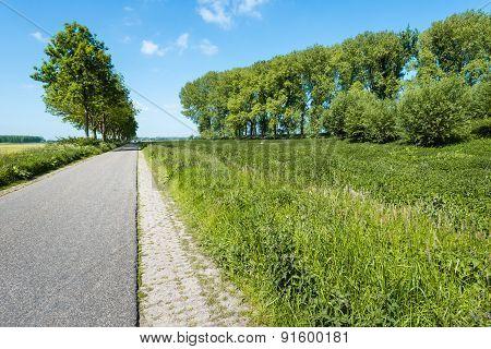 Empty Asphalt Road Through A Rural Area In The Spring Season