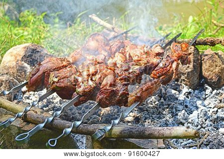 Shish Kebab Roasting On Charcoal