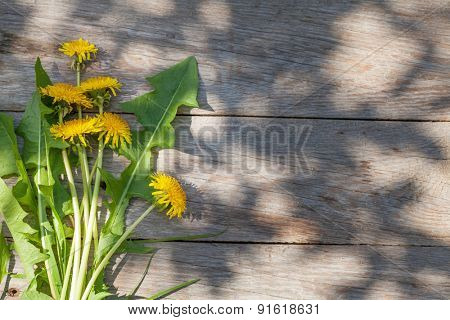 Dandelion flowers on garden table. Top view with copy space