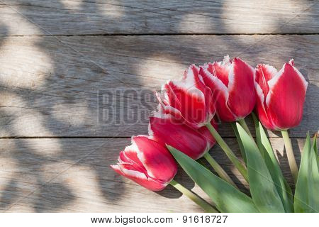 Colorful tulips on garden table. Top view with copy space