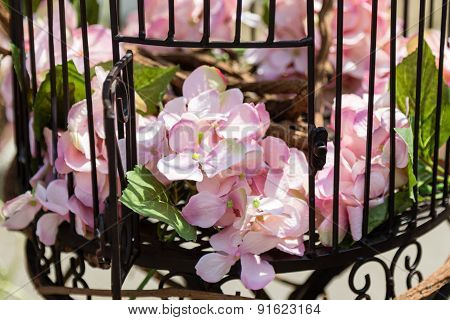 Flowers In Cage