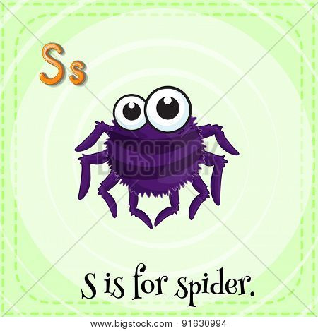 Flashcard letter S is for spider
