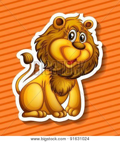 Closeup cute lion on orange background
