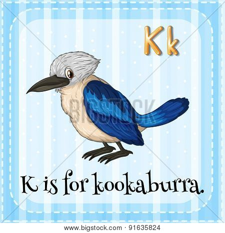Flashcard letter K is for kookaburra