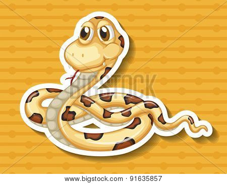 Closeup poisonous snake on yellow background