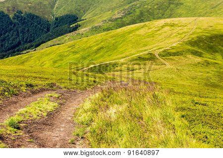 Path On The Hillside