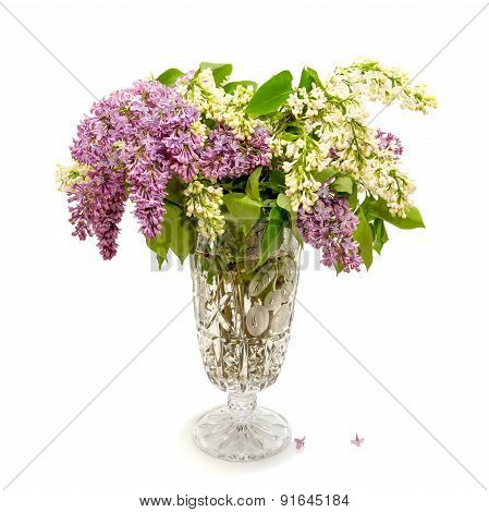 Bouquet Of Violet And White Lilac Flowers In Crystal Flower Pot On White Background