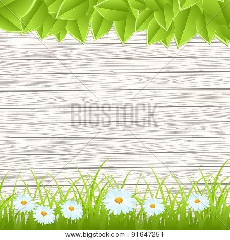 wall with grass