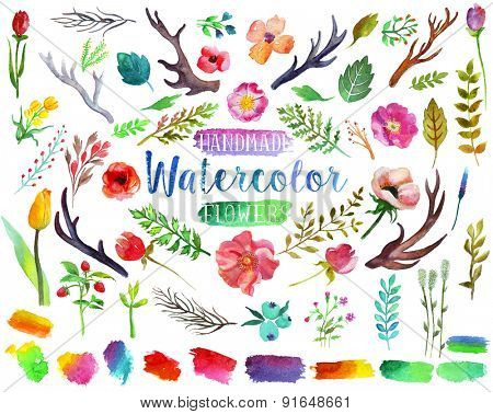 Watercolor hand drawn colorful flowers, leaves and horns. The art paint on white background with path selection.