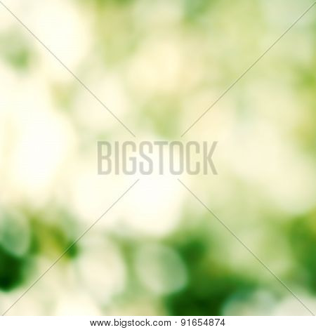 Abstract Summer Background. Spring Background With Defocused Lights Bokeh For  Poster, Ad.