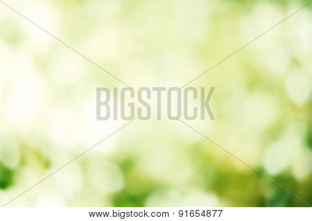 Abstract Summer Background With Defocused Lights Bokeh For  Poster, Ad.