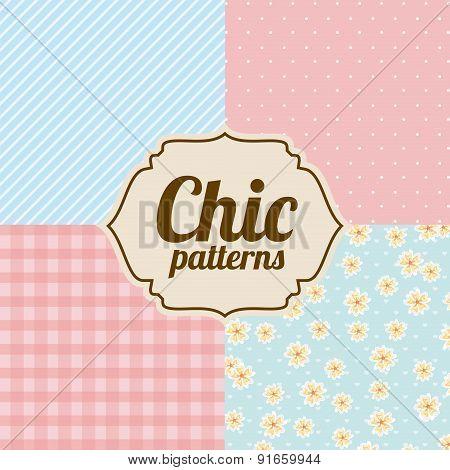 Patterns design over chic backgrounds vector illustration