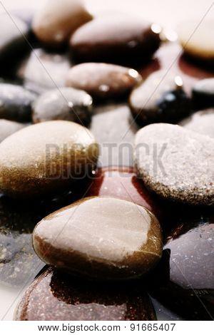 Wet sea pebbles on light background, macro view
