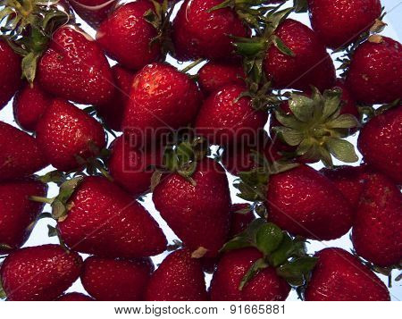 Much Of This Fresh Strawberries. Rear Light