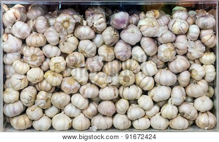 Garlic In The Box