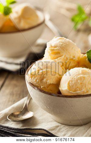 Homemade Organic Vanilla Ice Cream