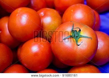 Lot of tomato