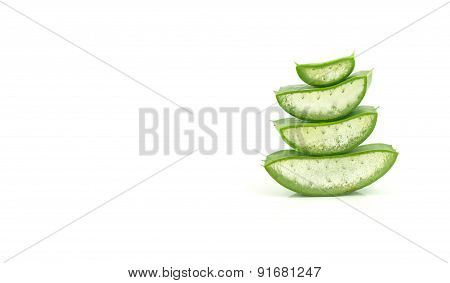Fresh Aloe Vera Leaf On White Background
