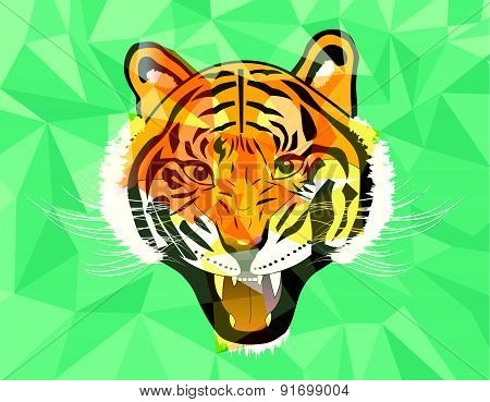 Tiger Anger Geometric Style