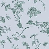 stock photo of peppermint  - Seamless floral pattern with peppermint sprigs - JPG