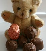 Teddy Has His Favourite Chocolates poster