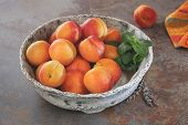 stock photo of apricot  - Bowl of harvested apricots on a rustic stone surface - JPG