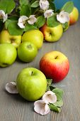stock photo of apple blossom  - Fresh apples with apple blossom on wooden table - JPG