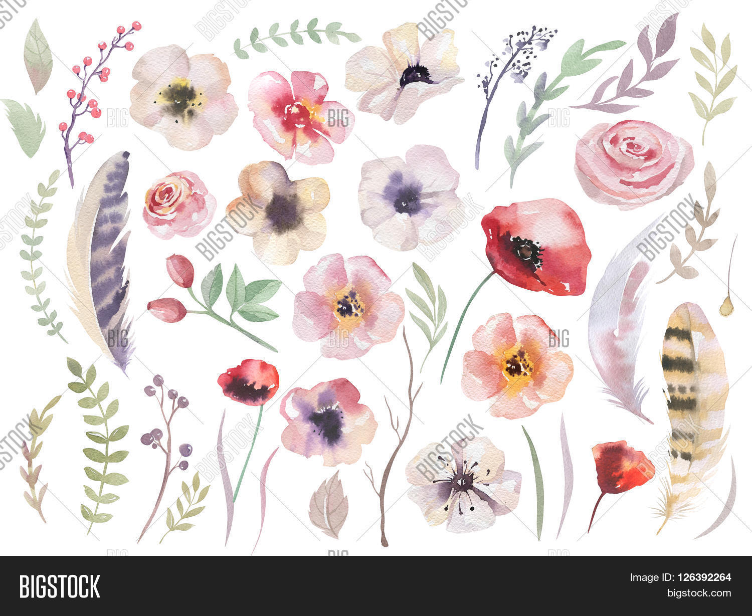 Watercolour Boho Flower Set. Image & Photo | Bigstock