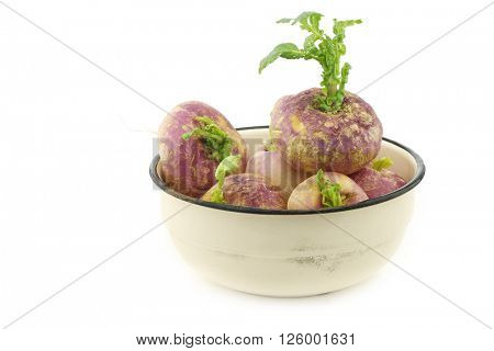 freshly harvested spring turnips (Brassica rapa) in an enamel bowl on a white background