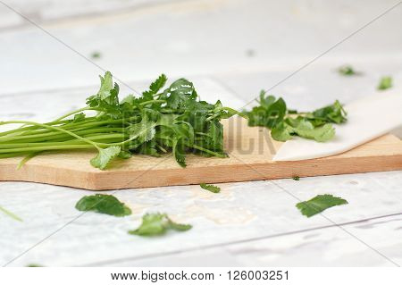 Chopped Coriander On The Wood