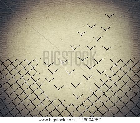 Metallic wire mesh transform into flying birds. Old paper vintage background