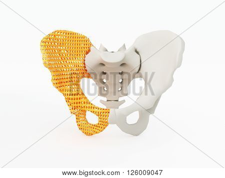3d printed hip bone. 3d printed implants on white background. 3d illustration.
