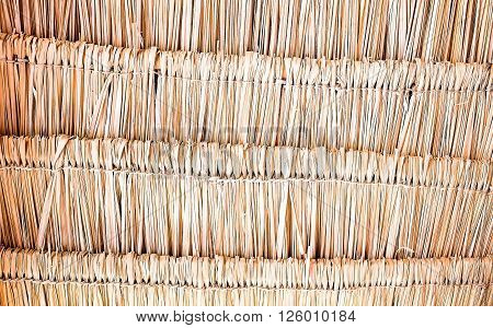 close up thatching roof abstract texture background