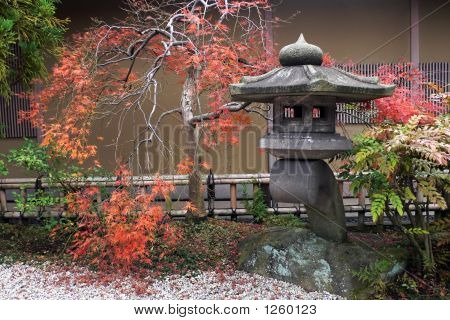 Japanese Lantern And Autumnal Maple Tree