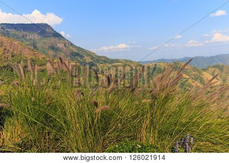 Meadow mountain with clouds and blue sky