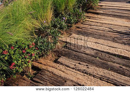 Wooden Path With  Grass And Flowers