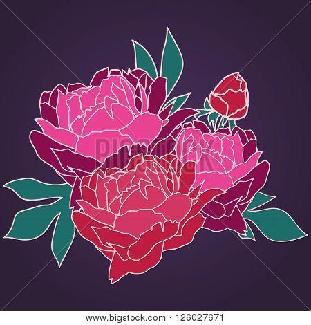 Illustration peony. Floral illustration. Bouquet of peonies. Illustration with beautiful peonies.
