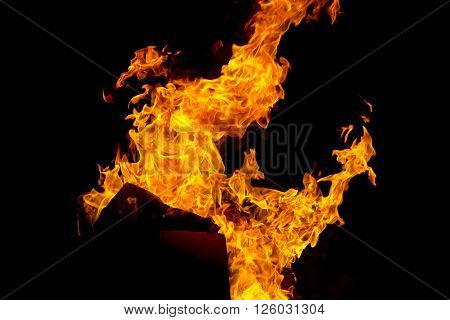 Photo of red fire flame on black background ** Note: Soft Focus at 100%, best at smaller sizes