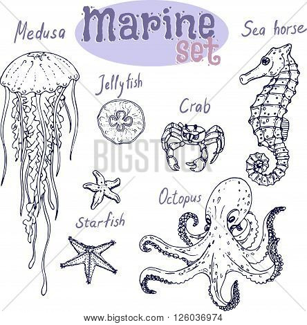 Marine set hand drawn with captions on white background. Vector