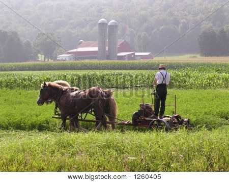 Amish Workday