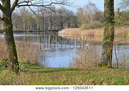 ponds in the countryside of South Bohemia Czech Republic